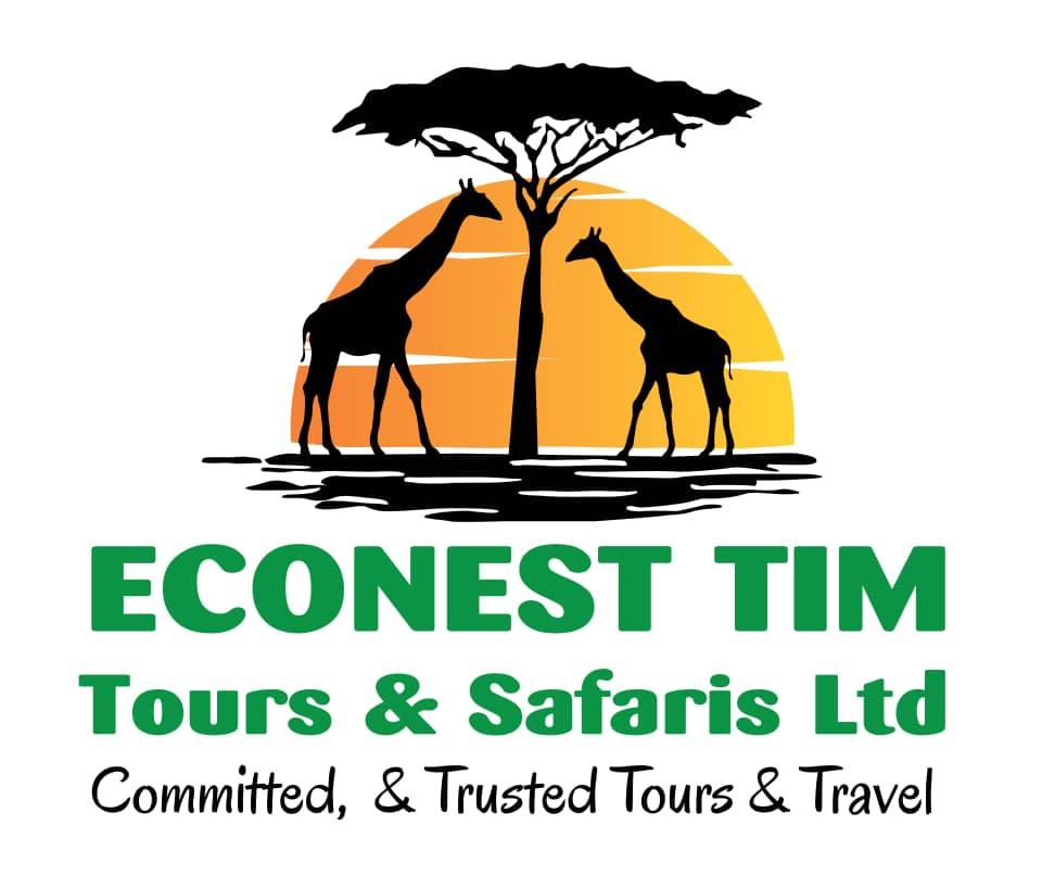 Econest Tim Safaris & Tours